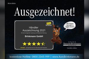 Mercedes-Brinkmann-Sternliebe-=-Ausgezeichnet